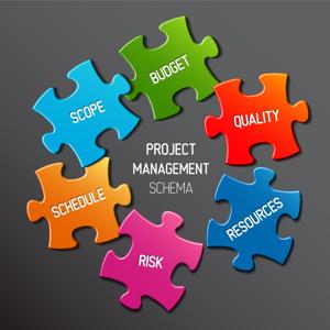 Professional Project Management - Mock Exam